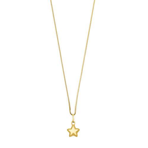 Estrela-Polida-10mm