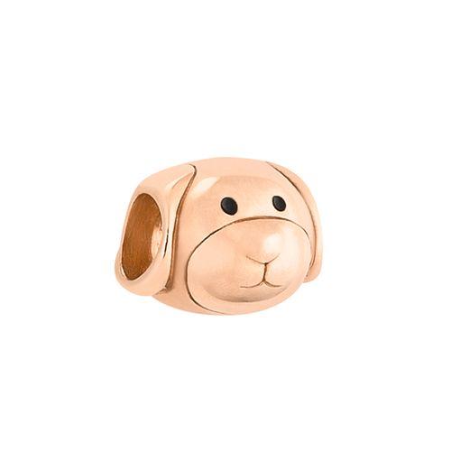 Cachorro-com-banho-de-ouro-rose